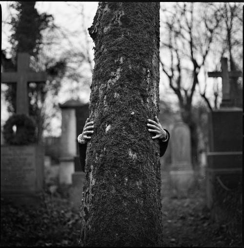 Baum & Hände