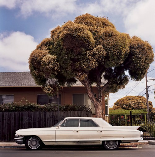 Summer | Christopher Hall
