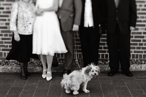 Gruppenfoto einer Hochzeitsgesellschaft auf Sylt