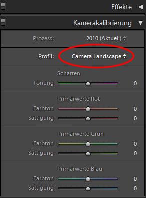 Kameraprofile auswählen in Lightroom