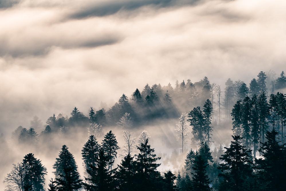 Landschaft, Fotografie, 200mm, Ausschnit