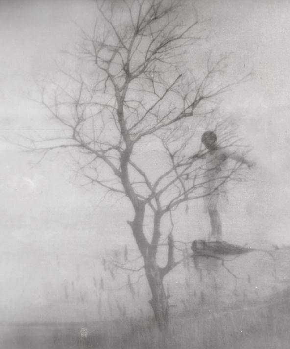 Doppelbelichtung Baum und Person