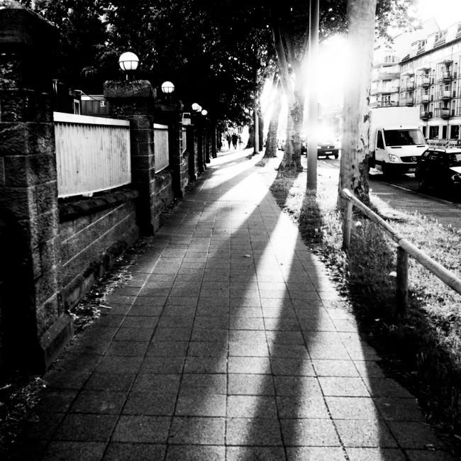 Gegenlichtaufnahme in Karlsruhe