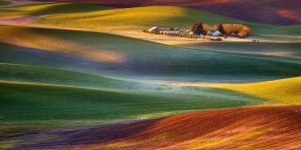 Frosty Morning, Palouse - Copyright Chip Phillips