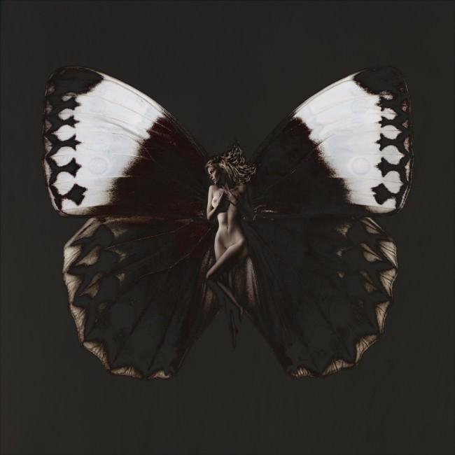 Schmetterling Anna