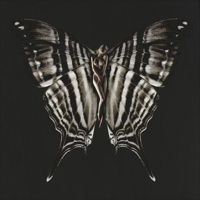 Schmetterling Lea