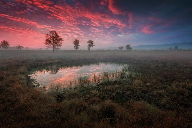 Morgenroete - © Kai Hormann