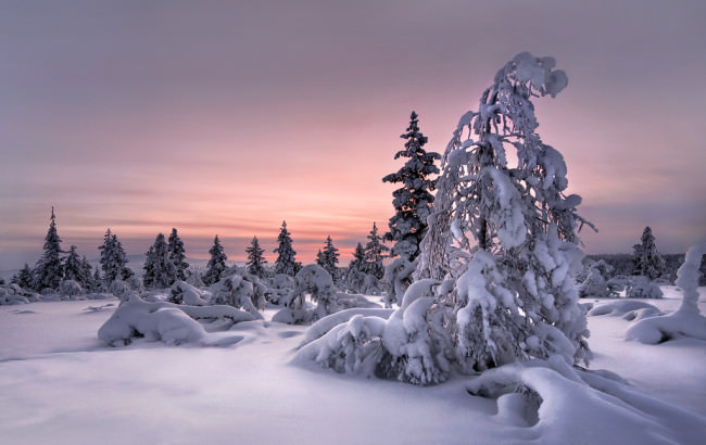 Winter Wonderland © Christian Schweiger