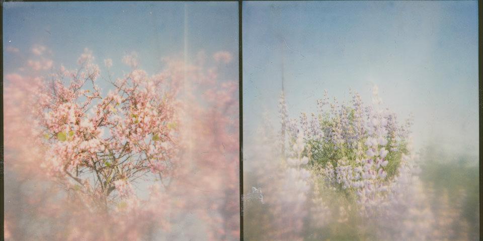 anemic-©-Jill-Auville