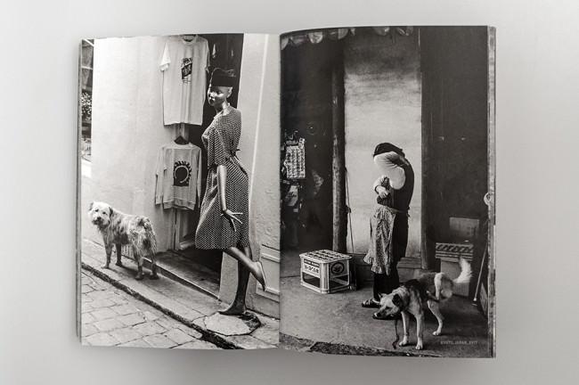 Elliott Erwitt, Dog Dogs