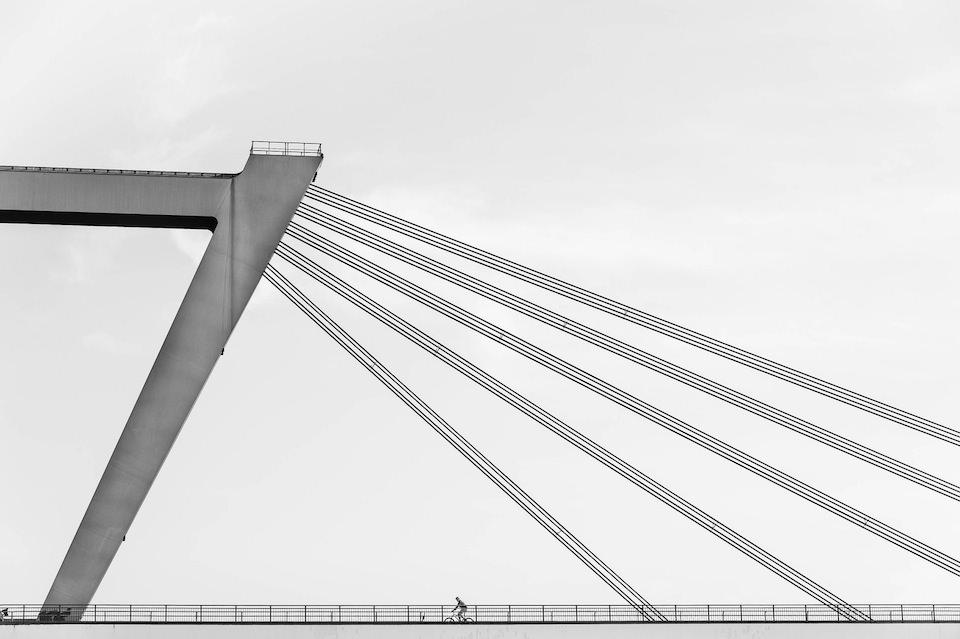Rheinaue © Markus Rebbert