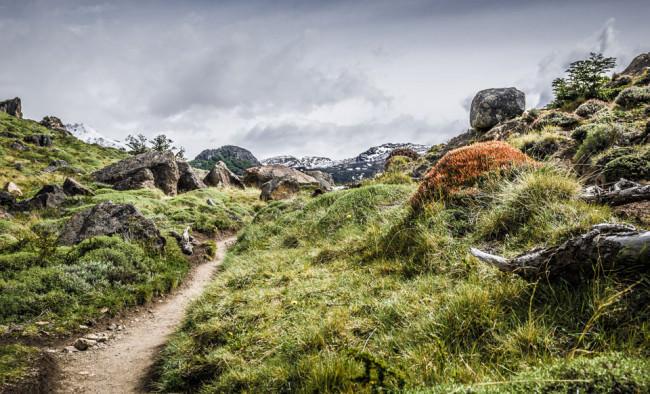 Patagonien: Mount Fitz Roy Trail © Helmut Steiner