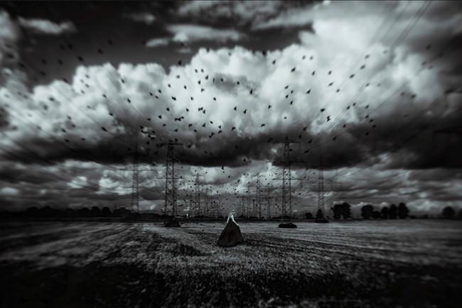 Revenge © Manuela unterbuchner