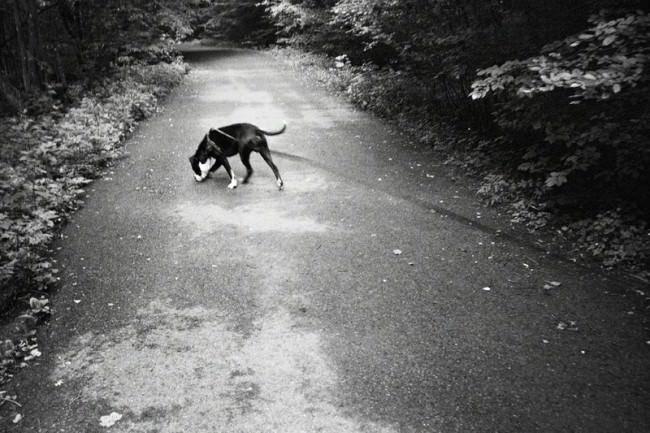 © Martina Woll