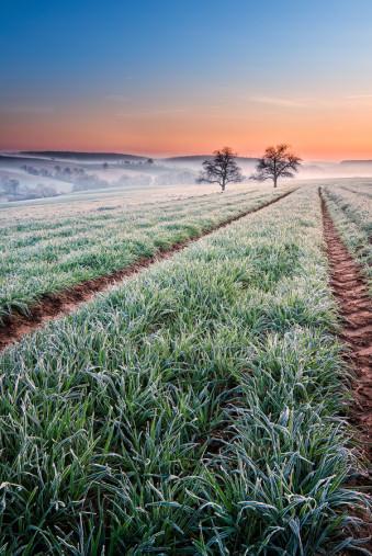 Daybreak © Michael Breitung