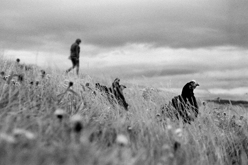 © Marcel Pommer