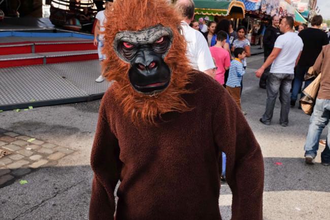 Monkey Monkey  © Martin Gommel