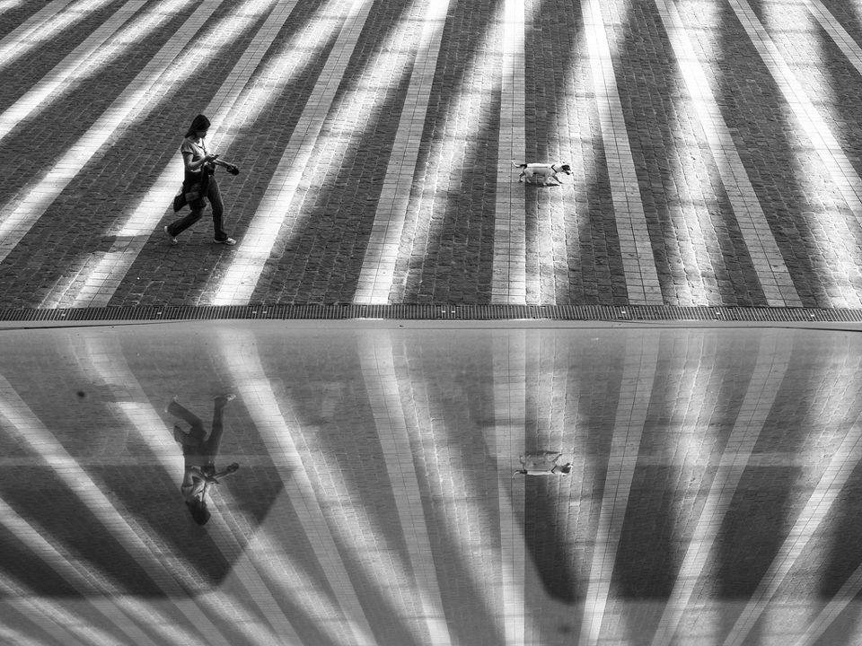 Georgie Pauwels Lines Linien Spiegelung Street Straßenfoto Straßenfotografie kwerfeldein Fotografie Foto Oben Perspektive