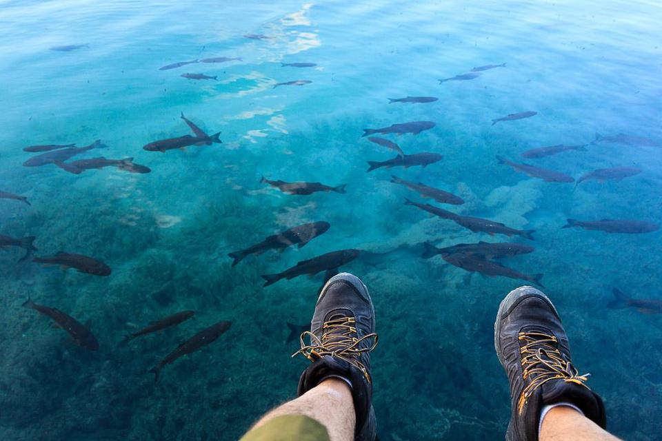 water, wasser, schuhe, sharks, blue, meer, urlaub, vacation