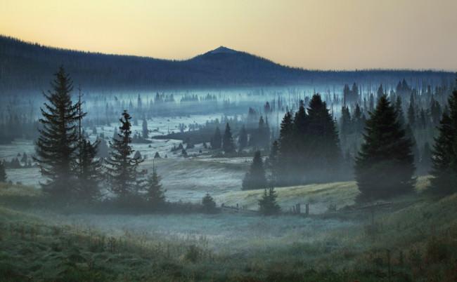 Bayerischer Wald © Kilian Schönberger