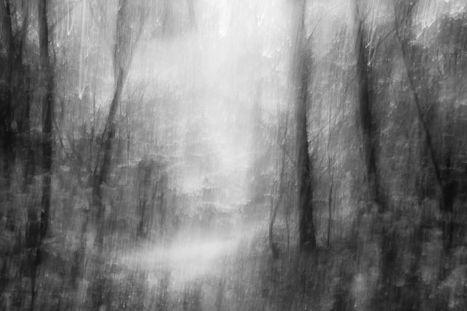 Autumn Light © Peter Gerhard