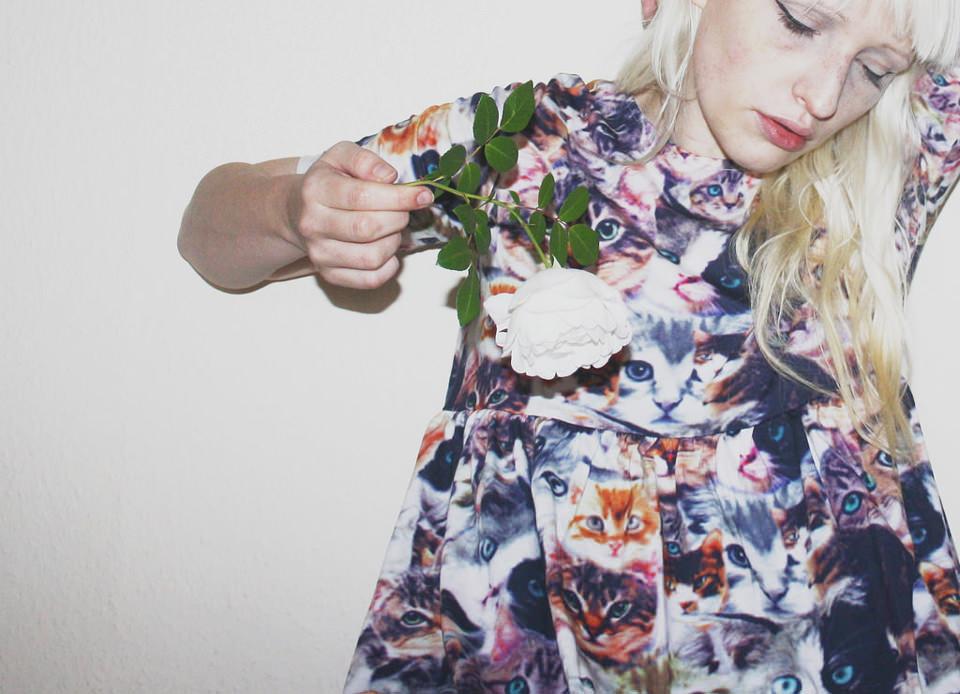kleid, rose, blond, katzen, angeblitzt, frau, rose