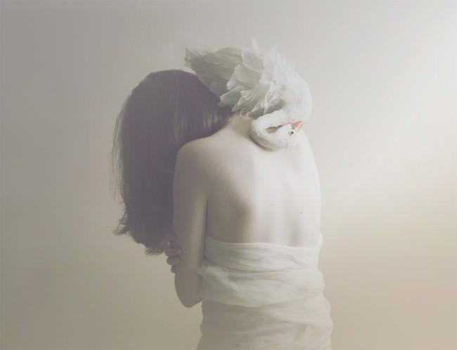 swansneck © Marina Refur