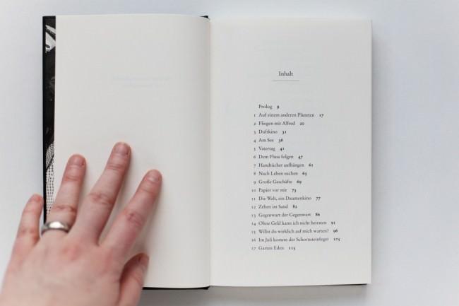Volker Gerling, Bilder lernen laufen..., Verlag Metrolit