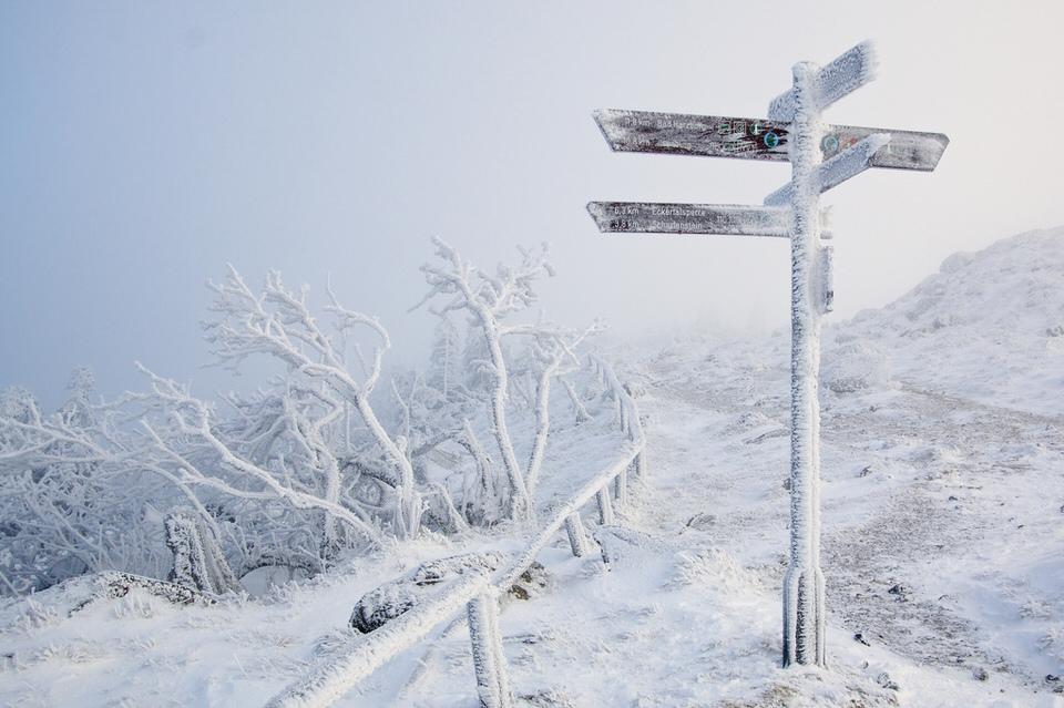 Schnee, Wegweister, Berg, Bäume, Winter