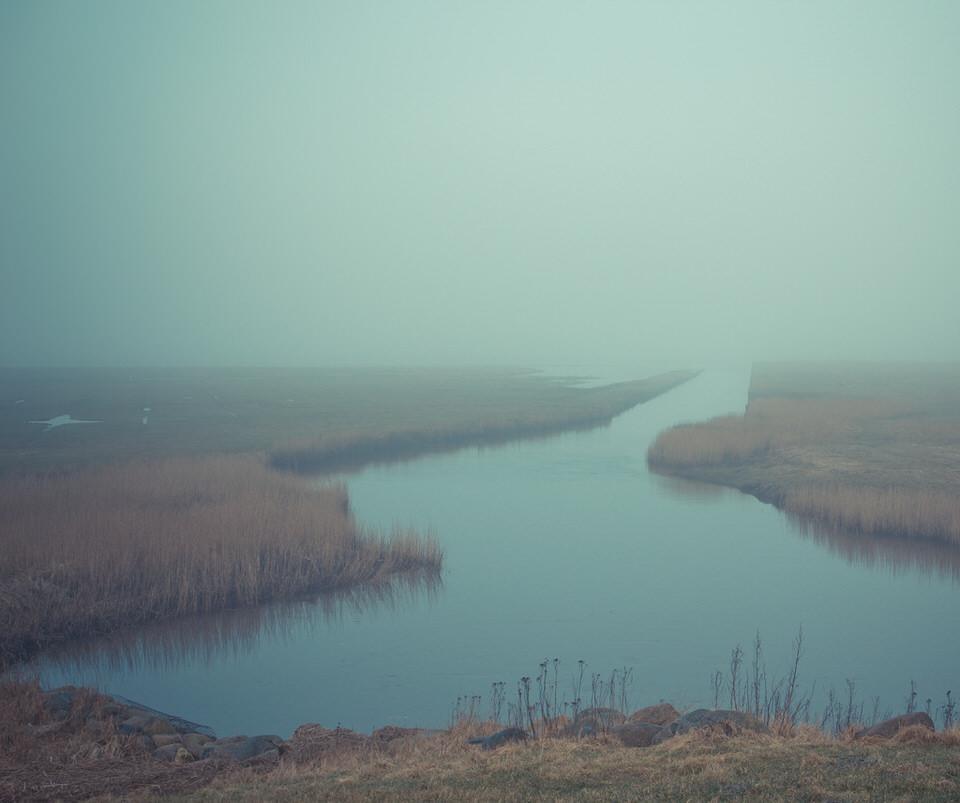 Landschaft, Wasser, See, Schilf, Fluss, Nebel,