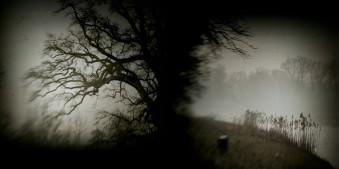 stillness title © Iwona Drozda-Sibeijn