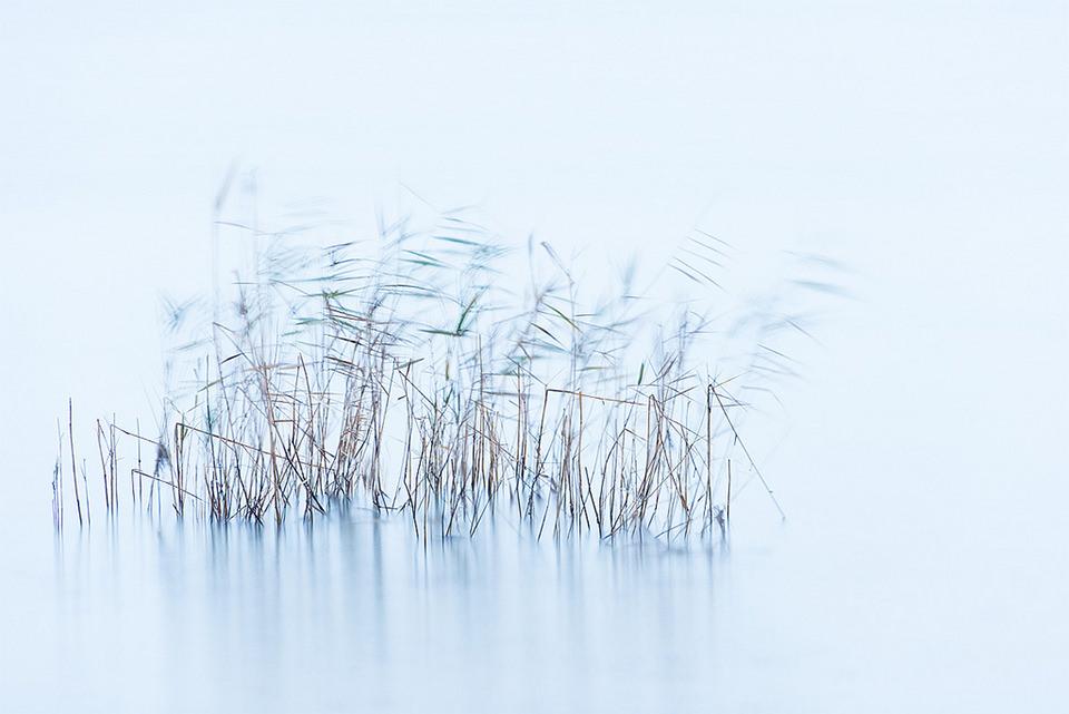 © blaueaster (flickr)
