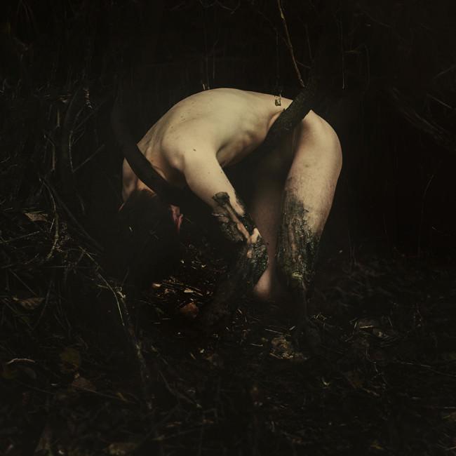 Entwined forever, Oktober 2013 © Manuel Estheim