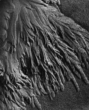 Fließender Sand, 1933-1936 © Alfred Ehrhardt, bpk Alfred-Ehrhardt-Stiftung