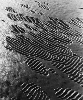 Eine geriffelte Fläche wird allmählich von einer feinbreiigen Sandschicht überzogen, 1933-1936 © Alfred Ehrhardt, bpk Alfred-Ehrhardt-Stiftung
