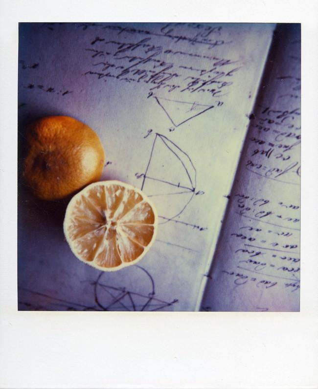 Zitrone © Peter Breuer