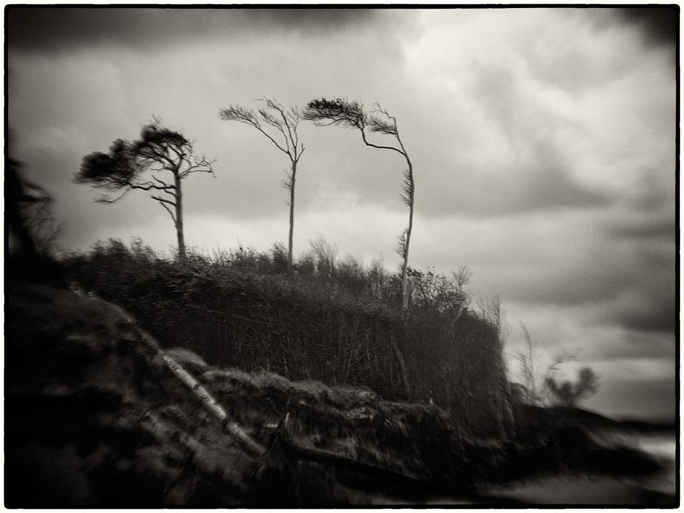 Darss © Daniel Stark