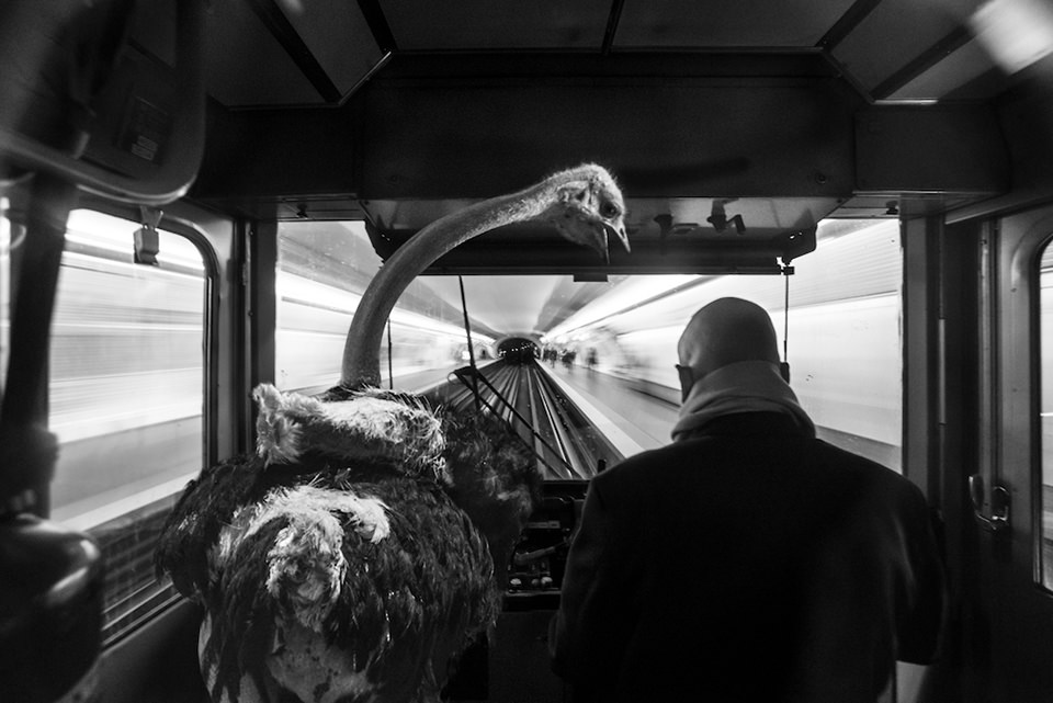 © Clarisse Rebotier, Thomas Subtil
