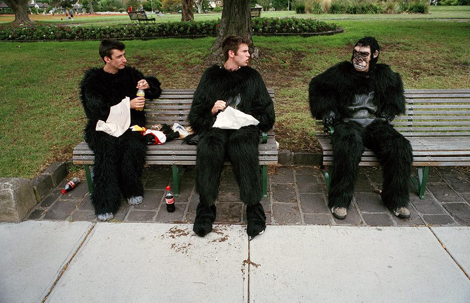Drei Männer sitzen in einem Affenkostüm auf einer Parkbank. Melbourne, Straßenfotografie von Jesse Marlow.