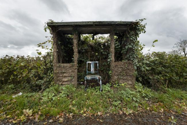 Eine Bushaltestelle bei Wales, die völlige von Pflanzen überwachsen ist.