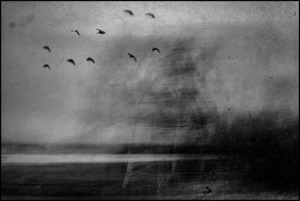 Untitled-©-Sebastian