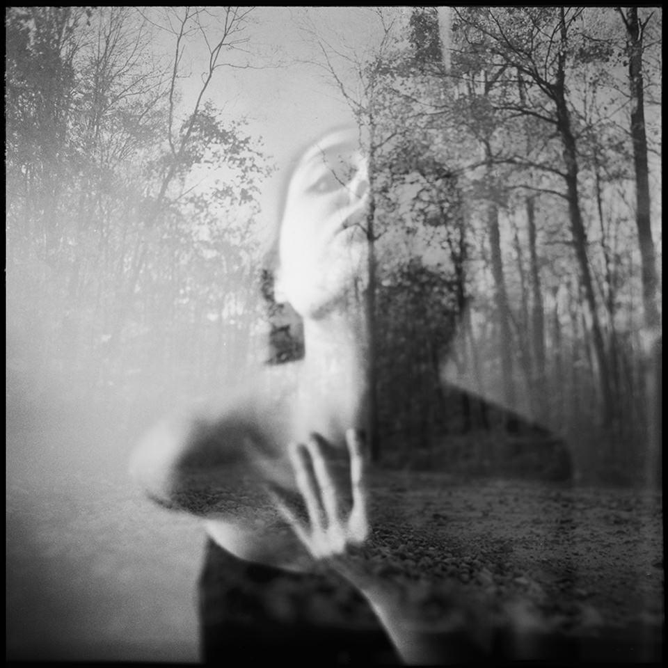 © Nanne Springer