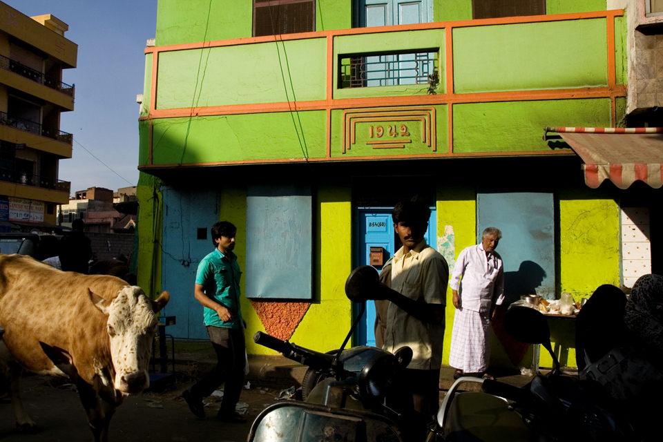 Eine Straßenfotografie mit dem überraschenden Element einer Kuh.