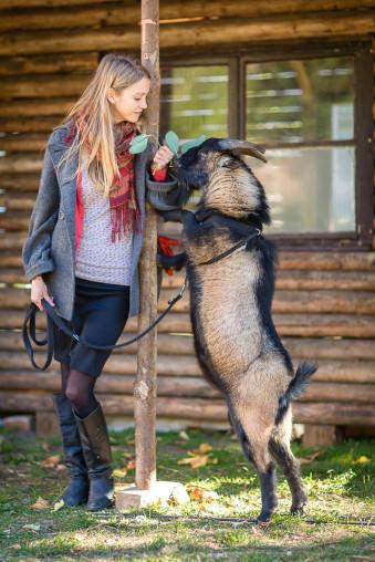 Eine junge Frau hält einen auf den Hinterbeinen stehenden Ziegenbock an der Leine und füttern ihn mit Blättern.