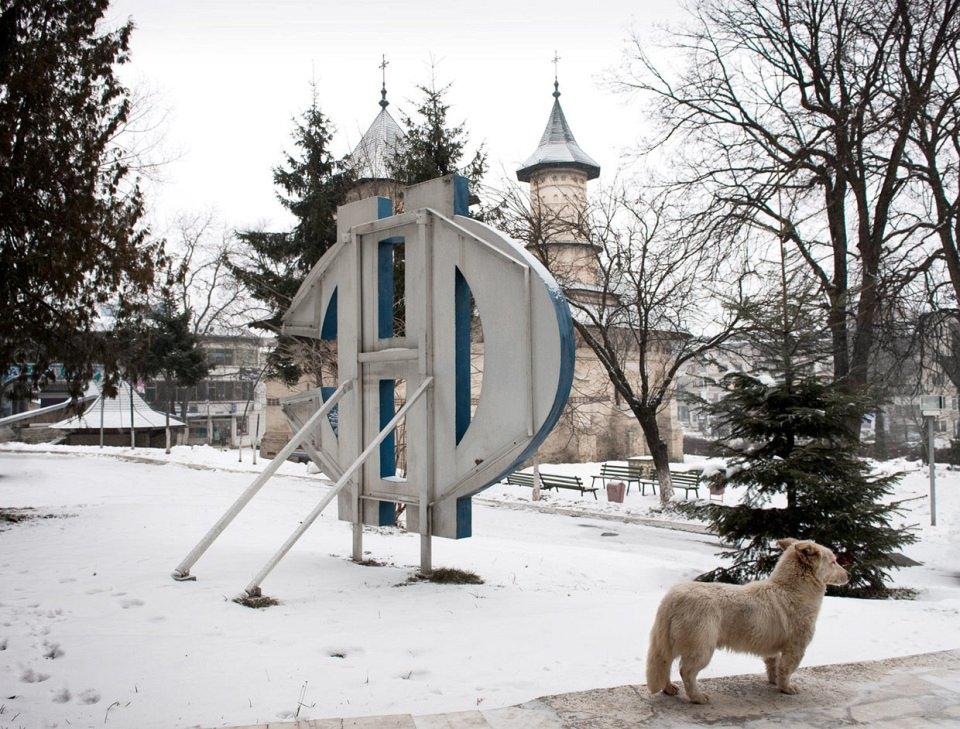 Ein Hund steht im Schnee neben einem großen Logo, dahinter Gebäude einer Kleinstadt.