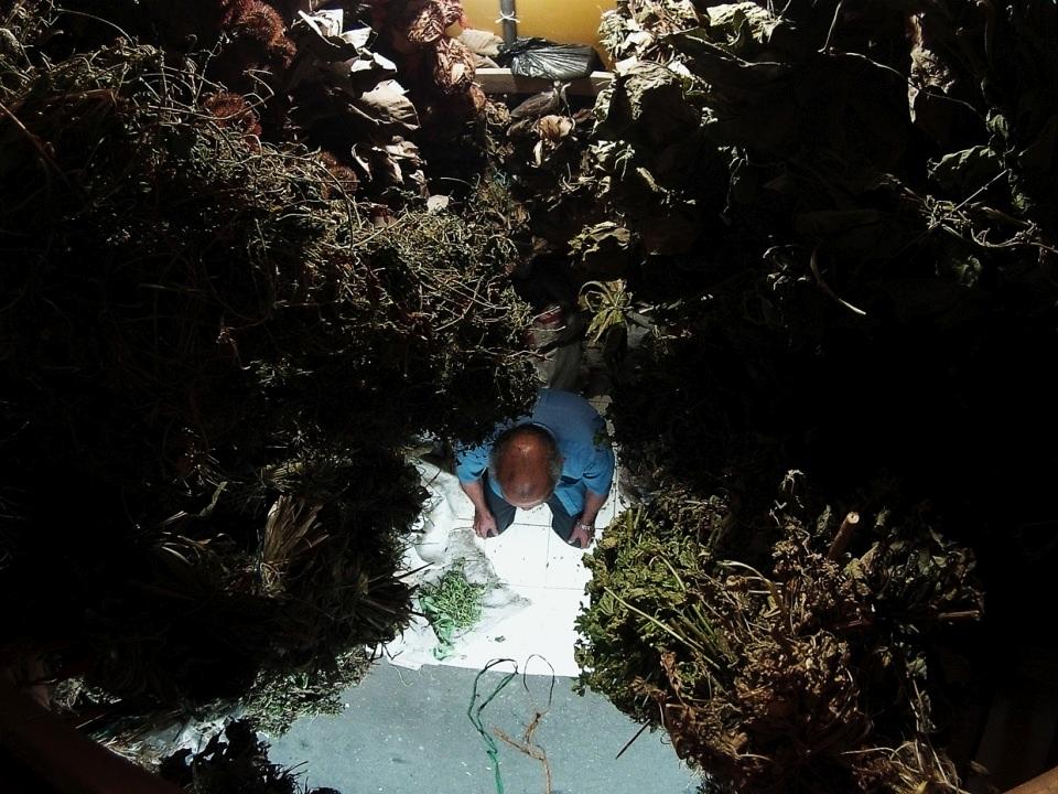 Winziges Ladengeschäft eines Botanikers, weitwinklig von oben fotografiert.