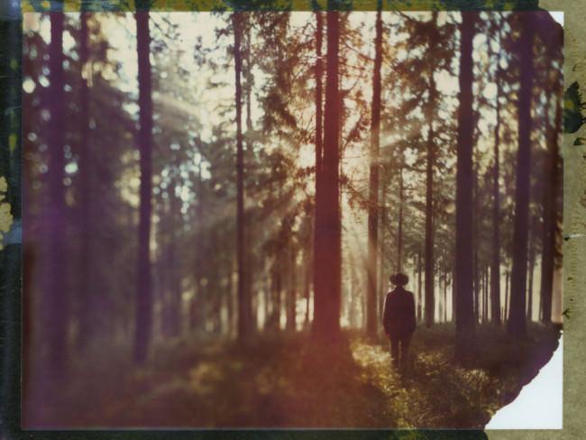 Ein Mann mit Hut steht vor einem Wald, durch den die Sonnenstrahlen schießen.