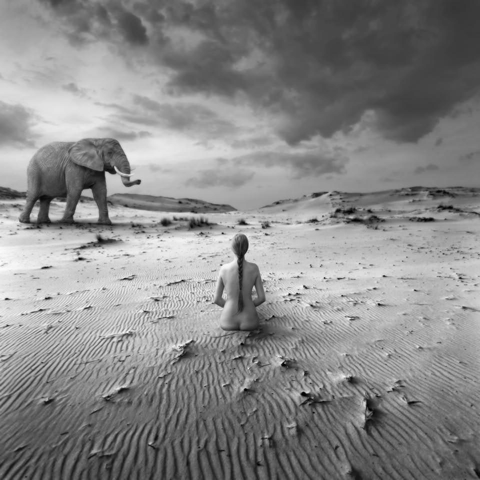 Modell mit Elefant.
