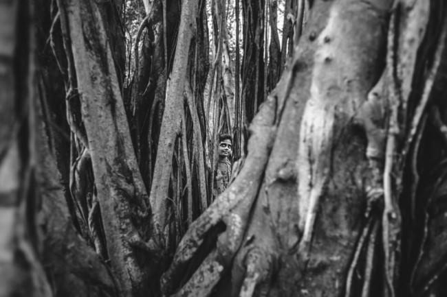 Indien. Ein Junge schaut durch ein paar Bäume hindurch.
