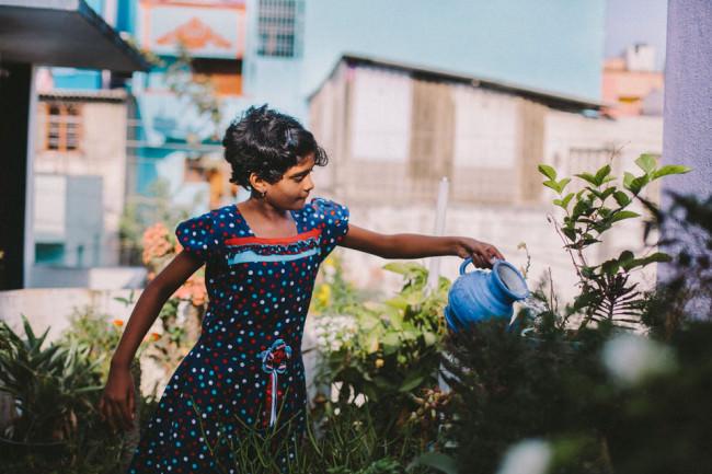 Indien. Ein Mädchen gießt Blumen.